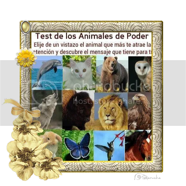 photo testdeanimales_zpsf8c69678.png