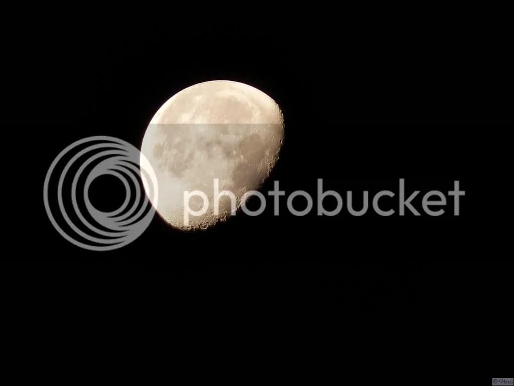 Photo P2400871.jpg