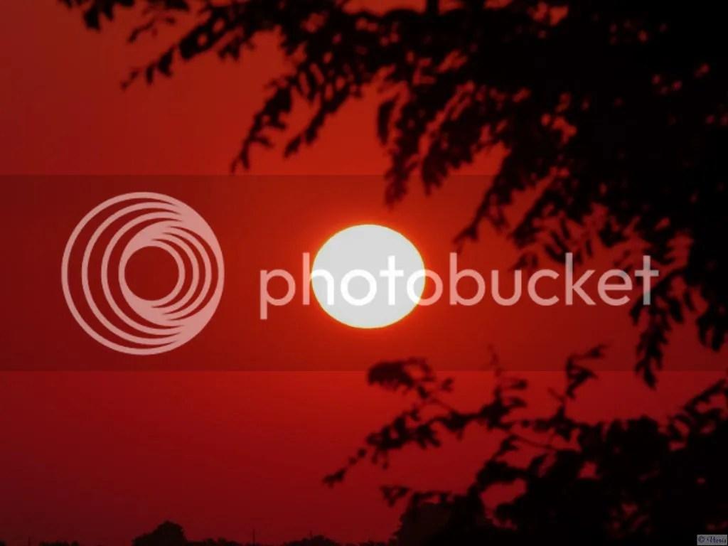 Photo P2400904.jpg