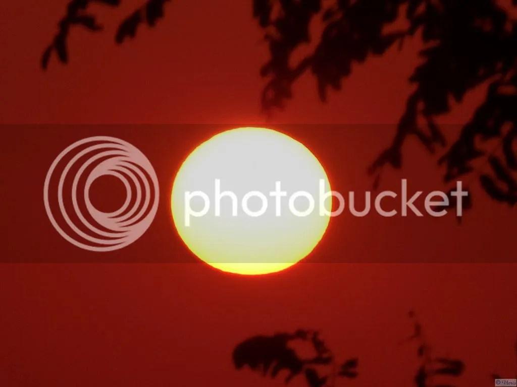 Photo P2400907.jpg
