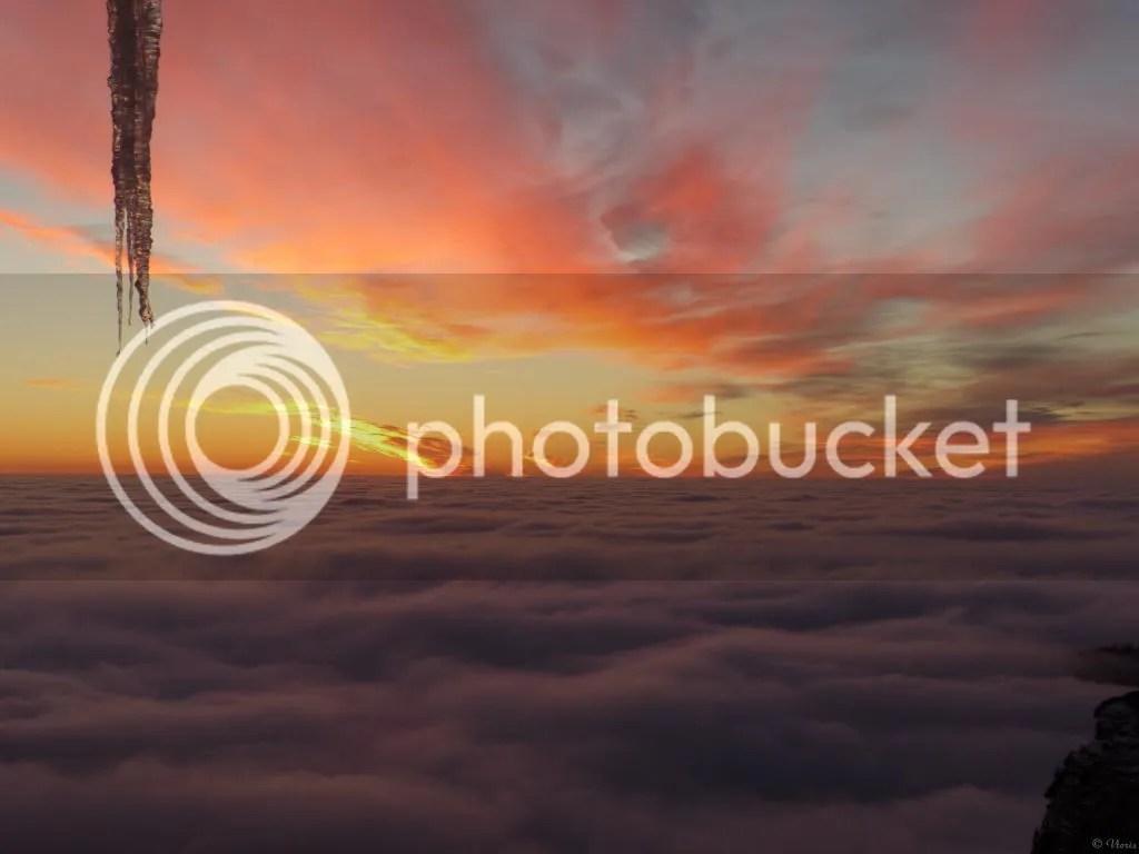 Photo P2550158.jpg