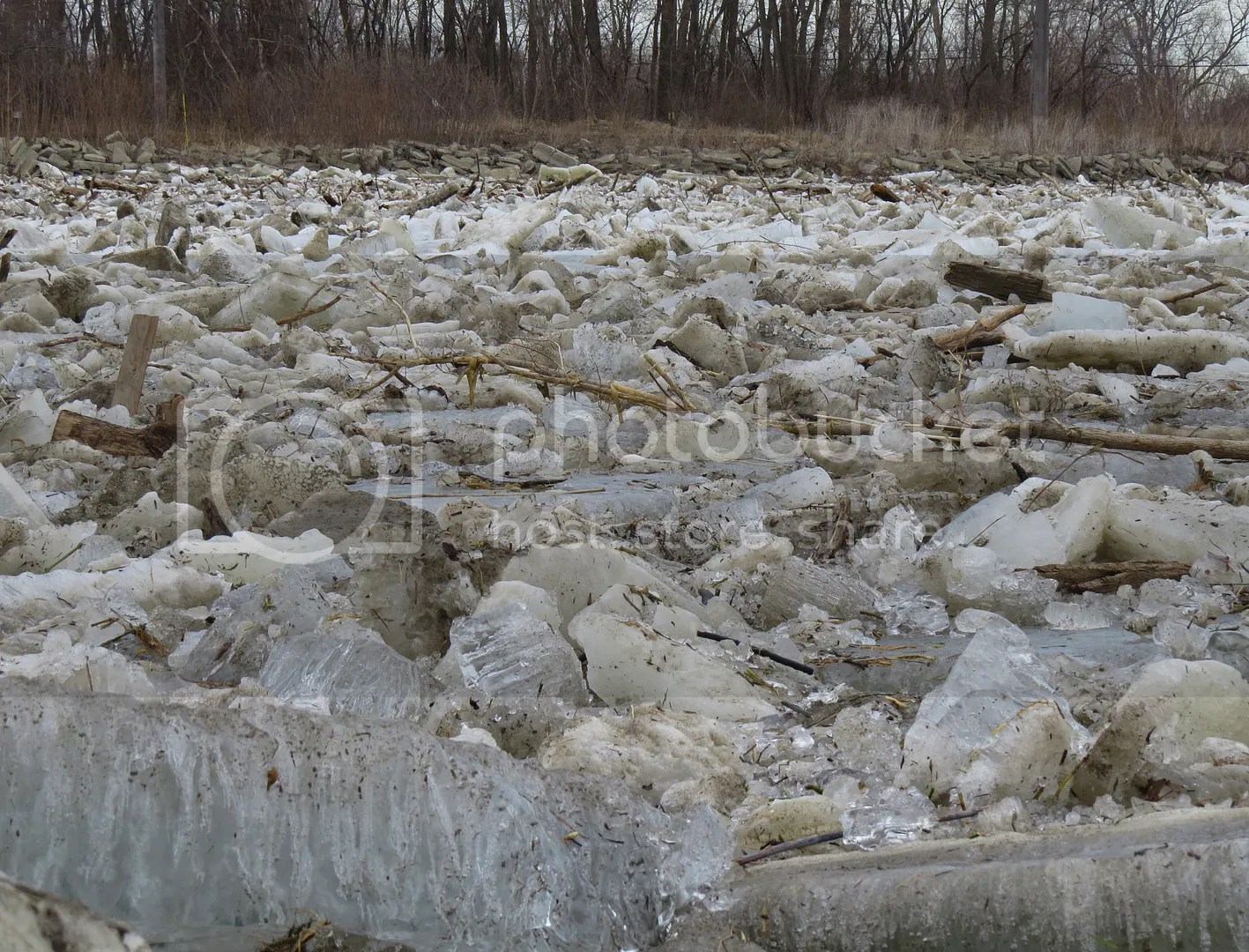 River Raisin Ice Jam 2015 photo 2115 River Raisin Ice Breakup 6_zpsfs4wdxqd.jpg