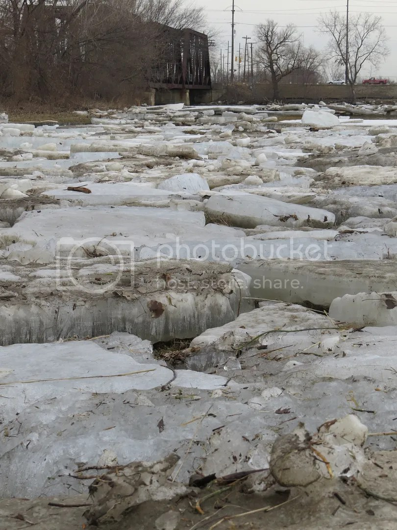 River Raisin Ice Jam 2015 photo 2115 River Raisin Ice Breakup 7_zpscmf3vs1x.jpg
