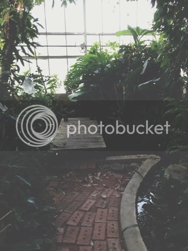photo 84014C6D-87FE-4E75-865D-27DA43187734_zpsgr6lr9bn.jpg