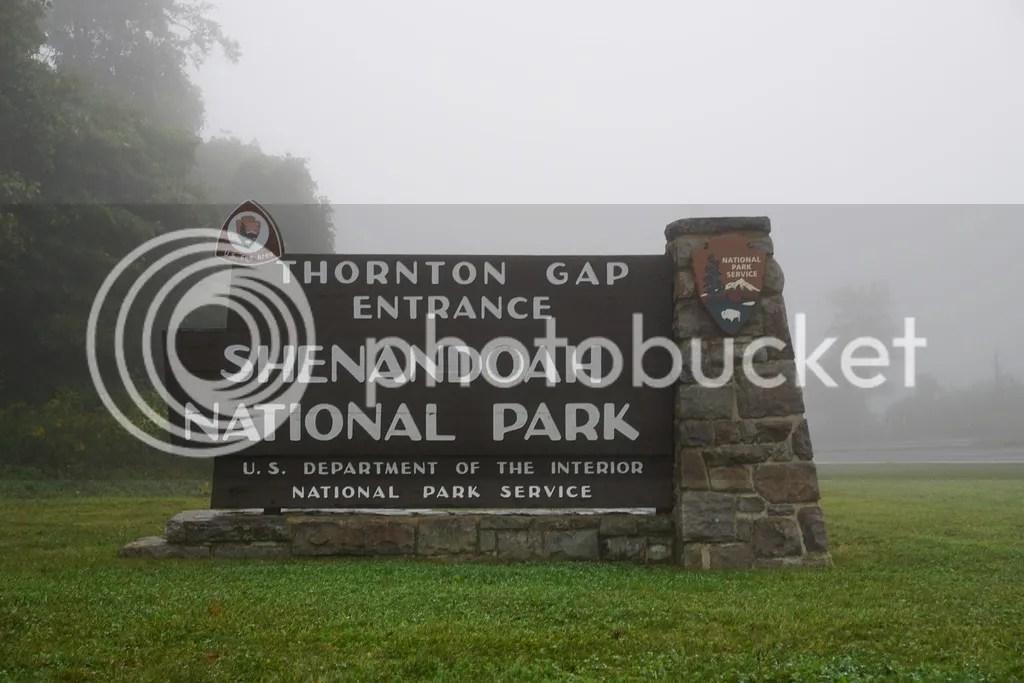 solo camping at Shenandoah National Park