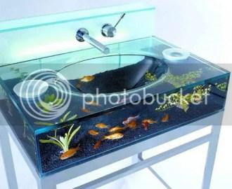 The Aquarium Sink