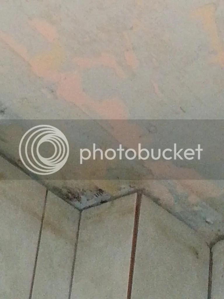 Wasserschaden 2014 - Badezimmerdecke1 -  11.09.14 photo 20140910_151536_zpsoh3rek4u.jpg