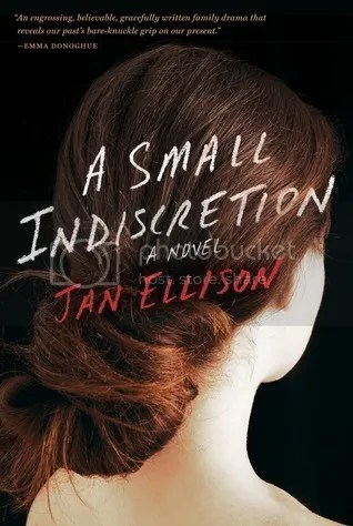 A Small Indiscretion by Jan Ellison Book Cover