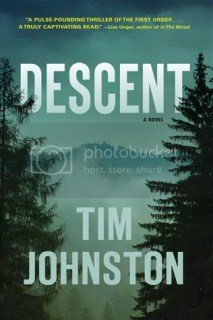 https://www.goodreads.com/book/show/20312459-descent
