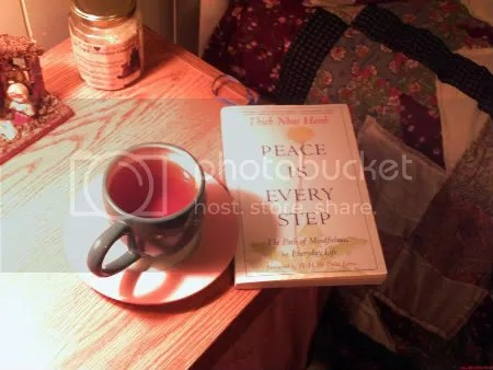 A cup of peppermint-spearmint tea and a book.
