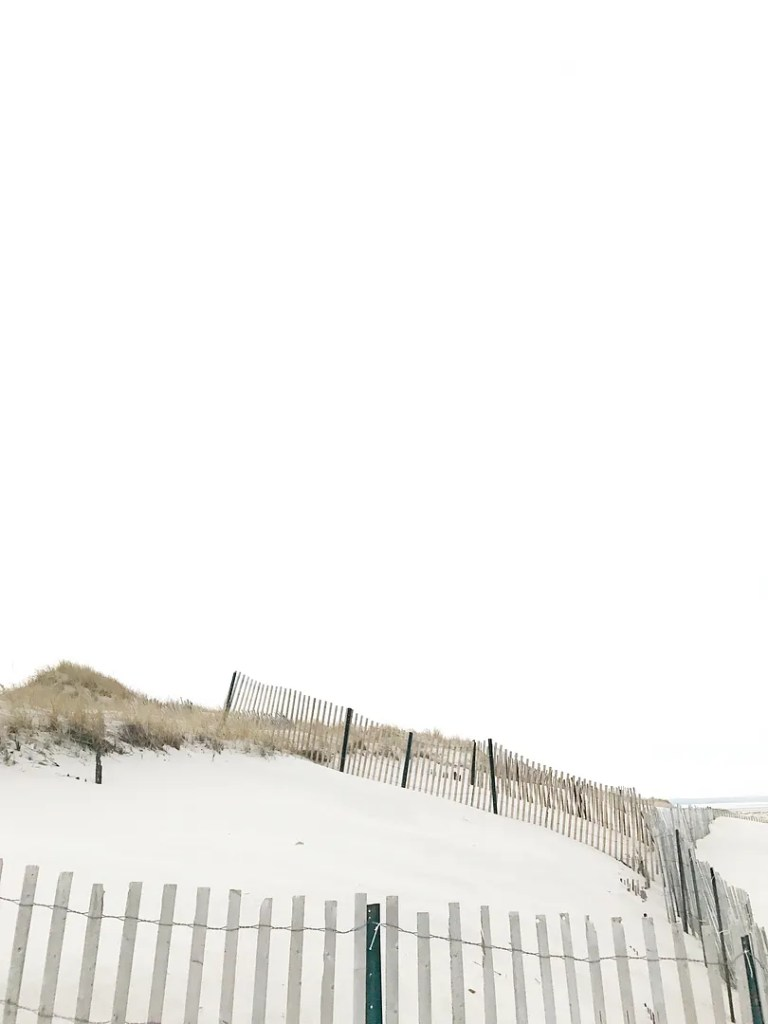 winter on cape cod 4