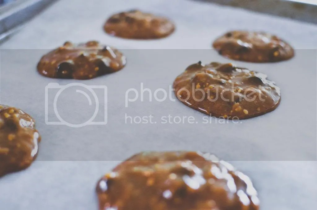 Chocolate Studded Peanut & Almond Butter Cookies