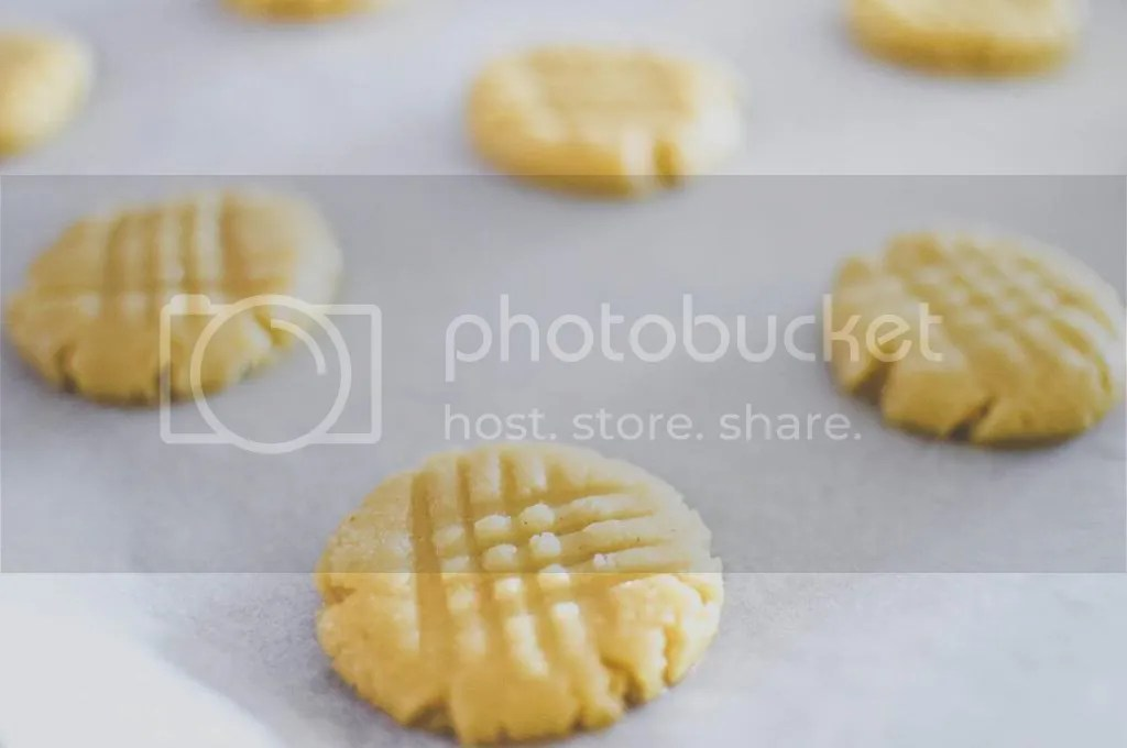 Unbaked Butter Cookies