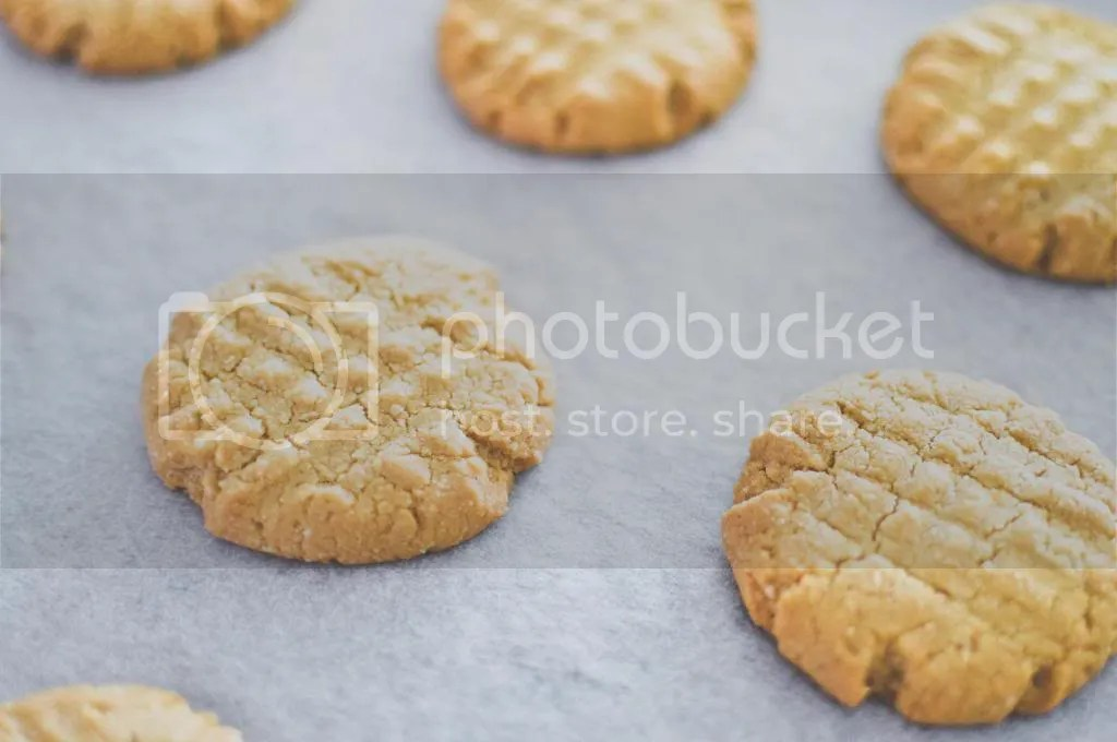 Baked Honey and Cardamom Butter Cookies