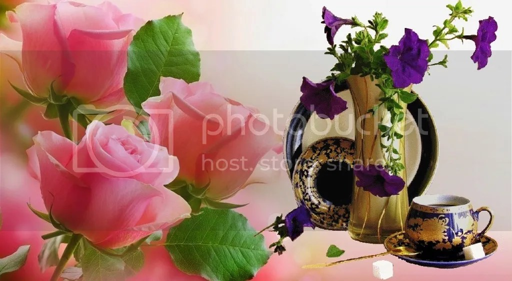 photo light pink roses images 1_zpsbmbklcrb.jpg