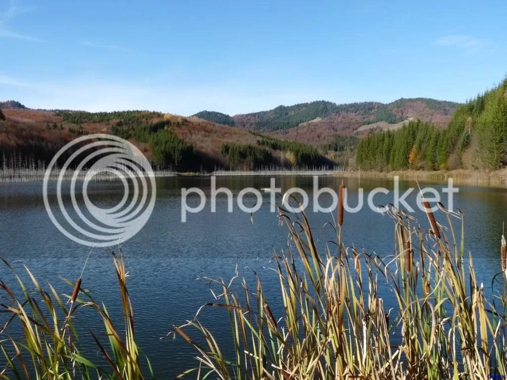 photo P296_814.jpg
