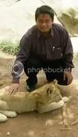 Bersama Singa