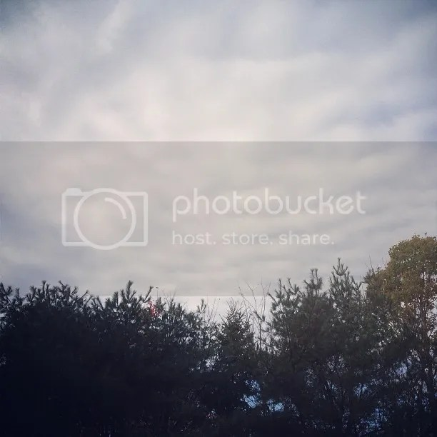 photo g2_zpsc6bdf513.jpg