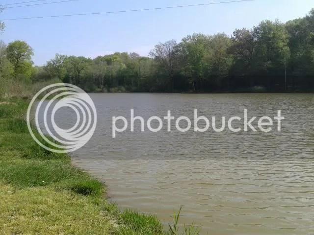 photo 001_zps0c688330.jpg
