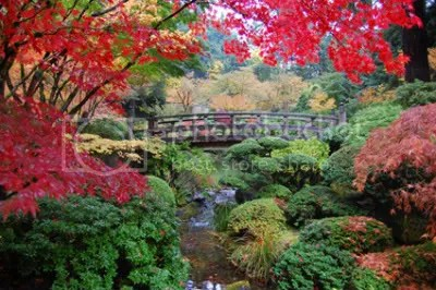Footbridge at Japanese Garden