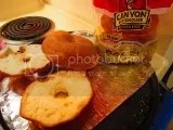 Canyon Bakehouse Gluten Free Plain Bagels