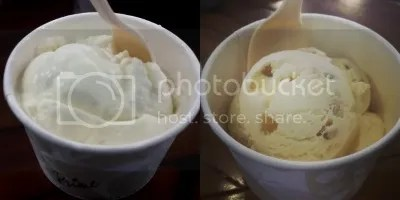 Skinny Mike's Hawaiian Ice Cream's Coconut Cream and Macadamia Nut Ice Cream