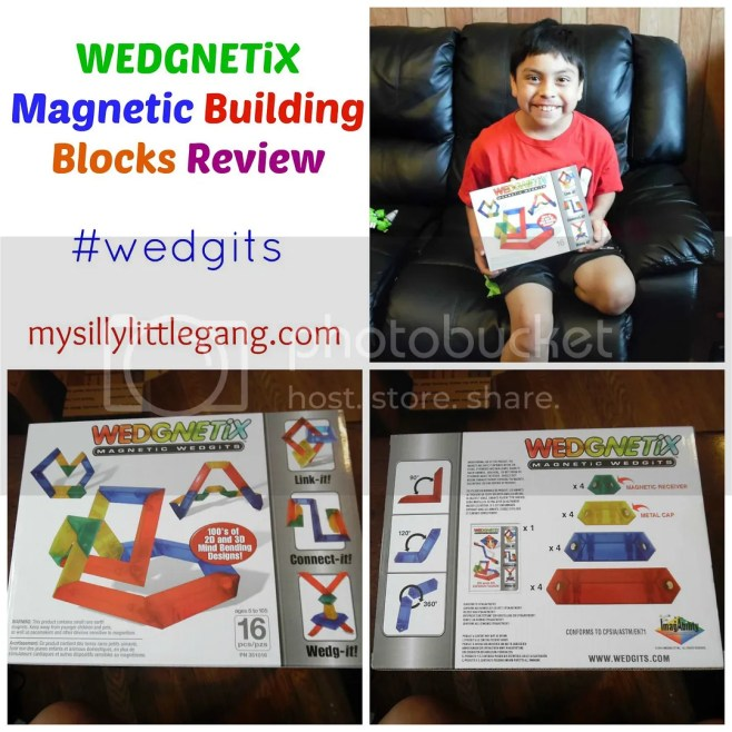 wedgnetix-magnetic-building-blocks