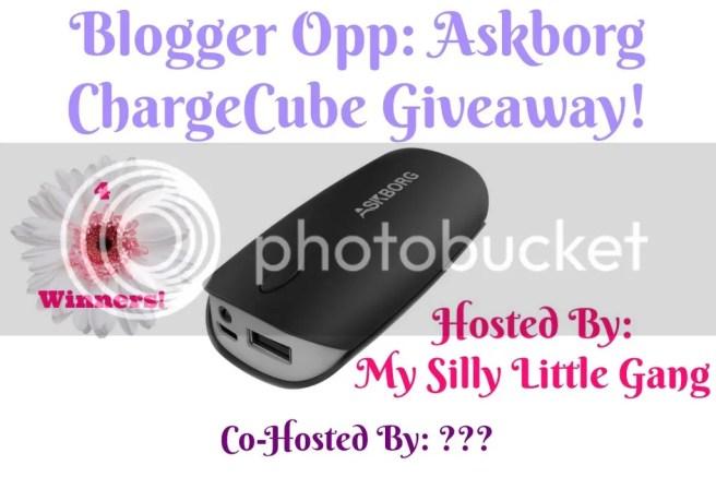 blogger opp askborg chargecube