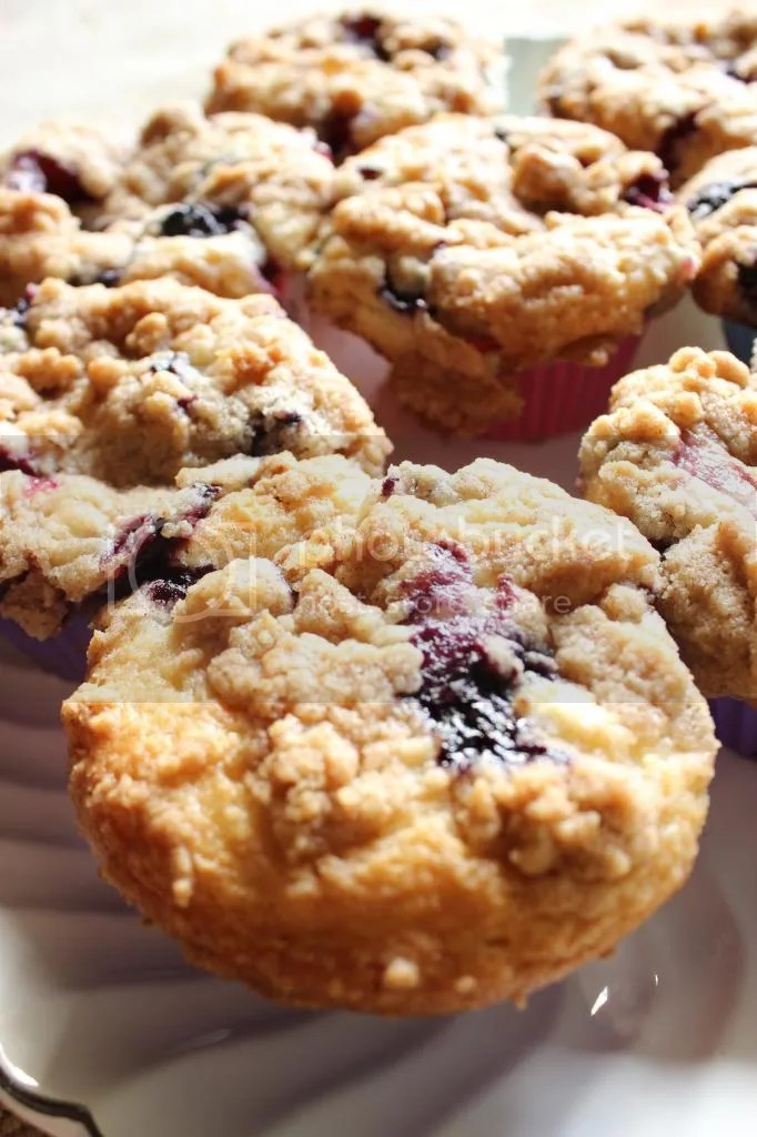 Blueberry Muffin with Cinnamon Streusel Topping