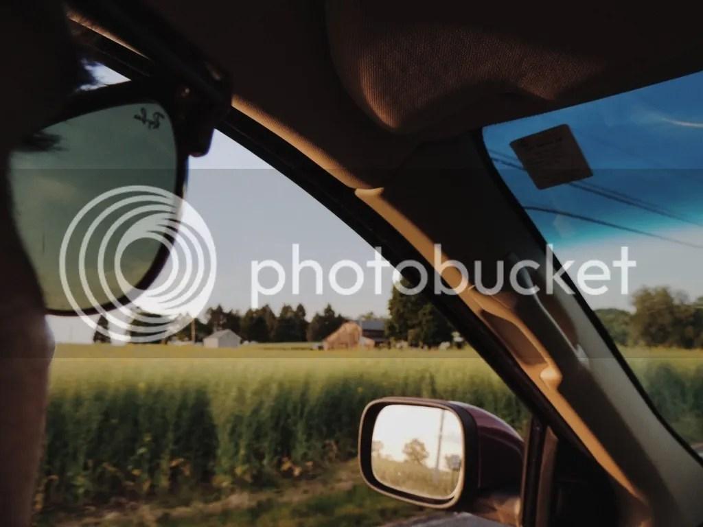 photo 01200866-AC99-4B83-B6FE-D453ECE35838_zpspermy0bl.jpg