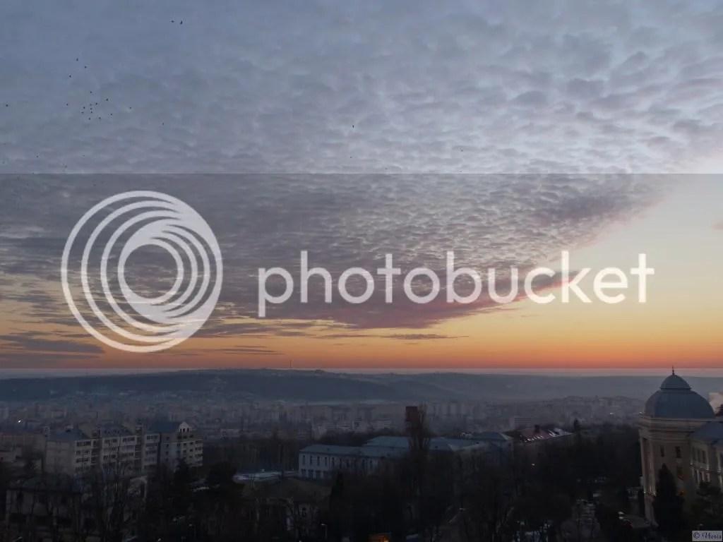 Photo P2580237_mod.jpg