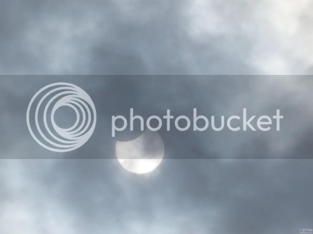 photo P2660828.jpg