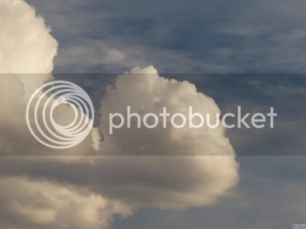 photo P2680511.jpg