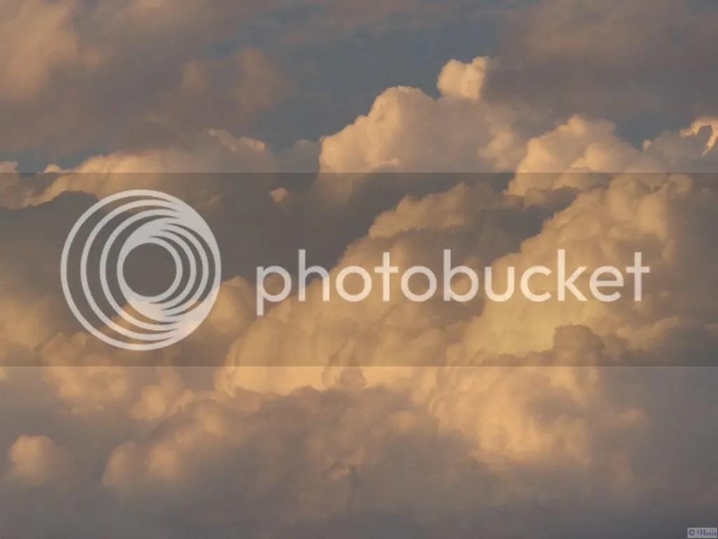 photo P2680541.jpg
