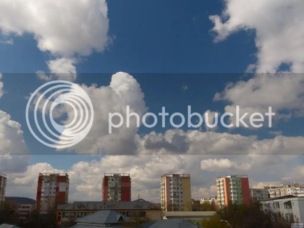 photo P2680593.jpg