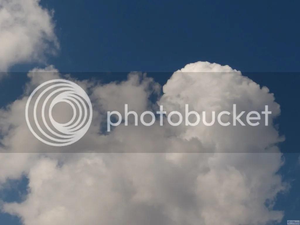 photo P2680596.jpg