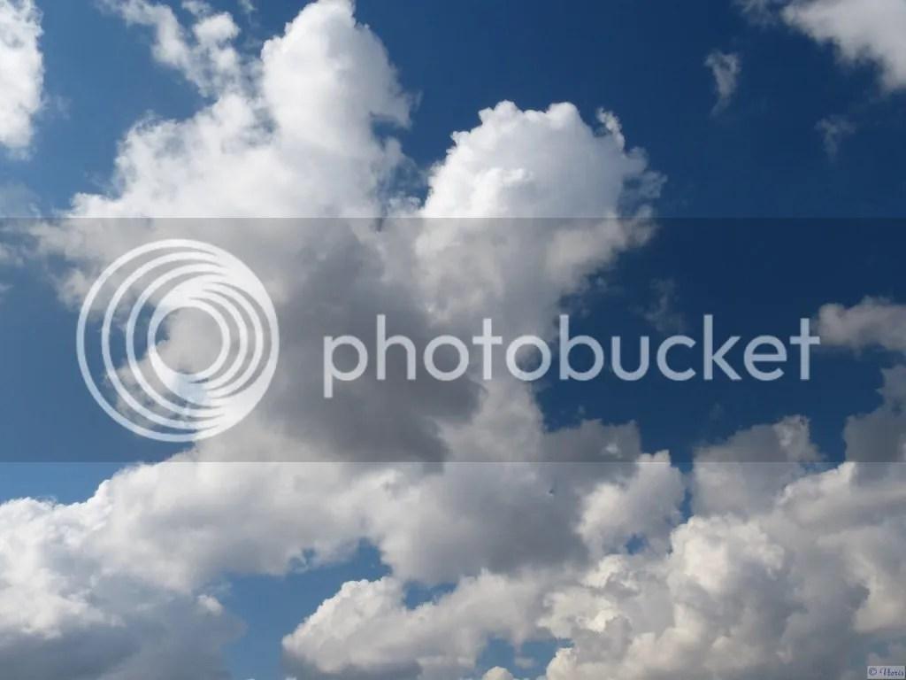 photo P2680609.jpg