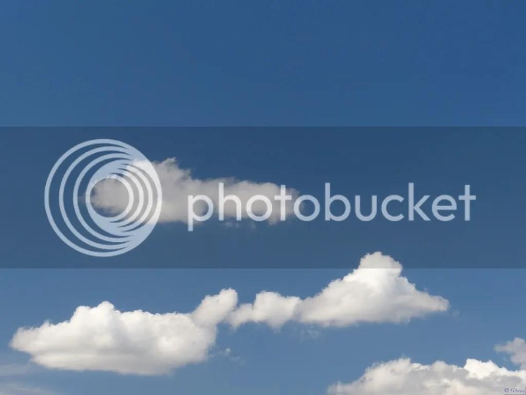 photo P2690016.jpg