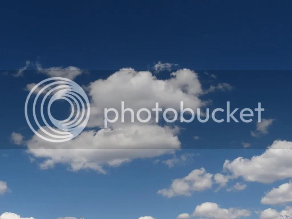 photo P2690018.jpg