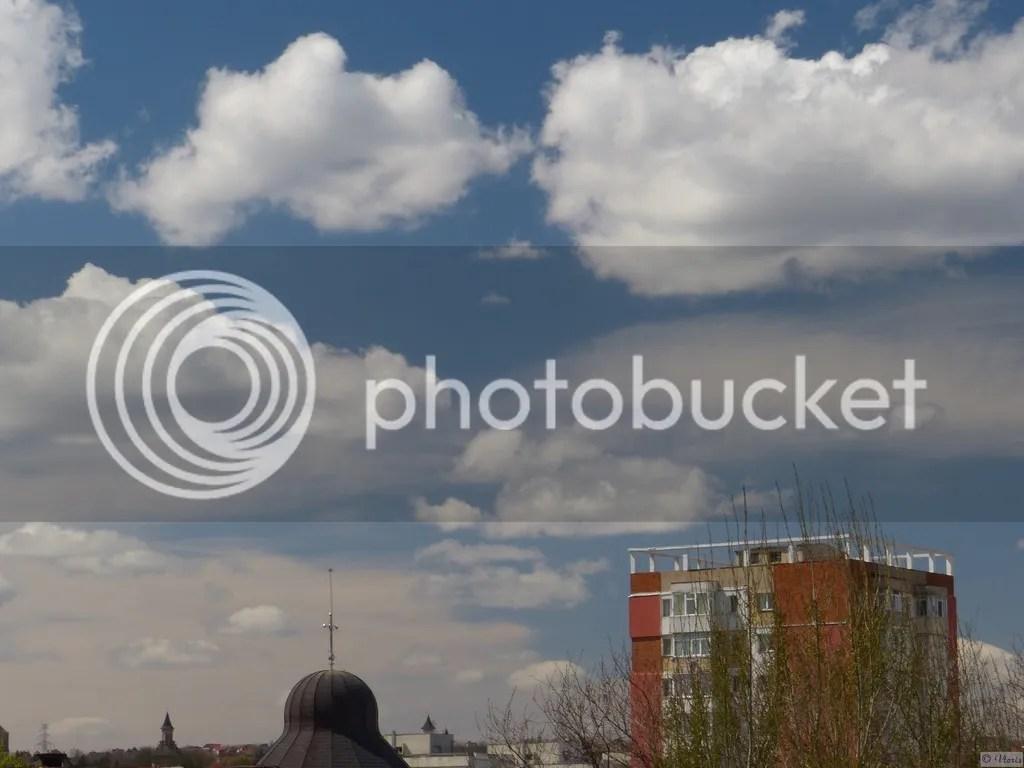 photo P2690034.jpg