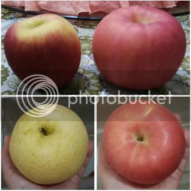 photo apple.jpg
