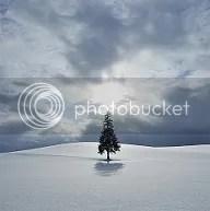 photo inspo-sq_zps2db48439.jpg