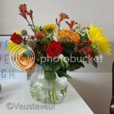 En nieuwe bloemen... zomers is het wel!