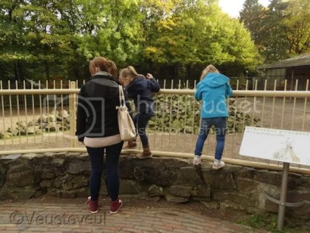 Ouwehands dierenpark samen met Lianne en de meisjes!