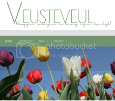 Blog Veusteveul.nl - vierhonderste blog! Lekker bloggen!