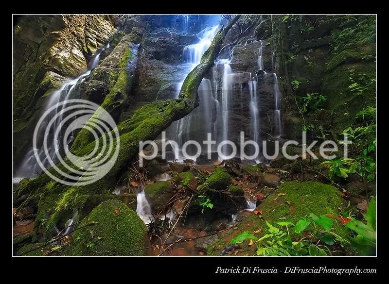 mystical-ground.jpg mystical image by mizzrym