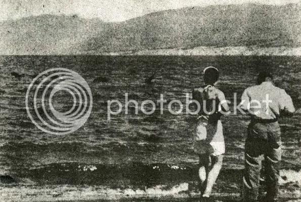 ogopogo dari danau okanagan canada by erit07