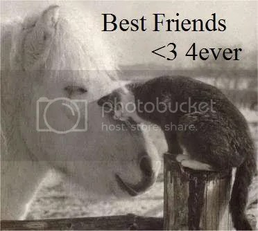 Best-Friends.jpg Best Friends image by Mentalrabbitpsycho2290
