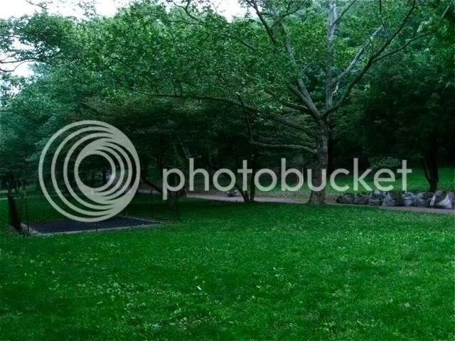 riverside park, spring, fences