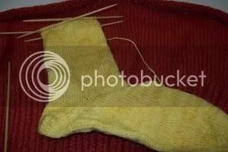 Beer Sock